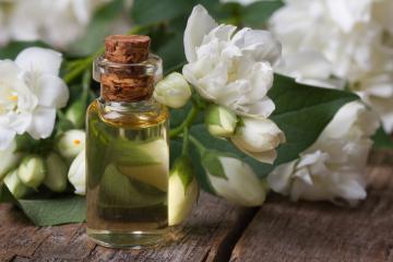 Топ – 9 самых интересных парфюмерных компонентов