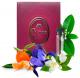 Bruna Parfum № 846 (Escentric 05*)  2 мл