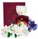Bruna Parfum № 920 (Angels Only*)  50 мл
